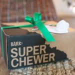 Bark Box Super Chewer Box featured by top Houston lifestyle blog, Fancy Ashley