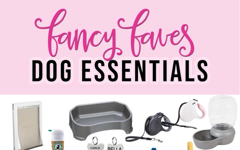Dog Essentials