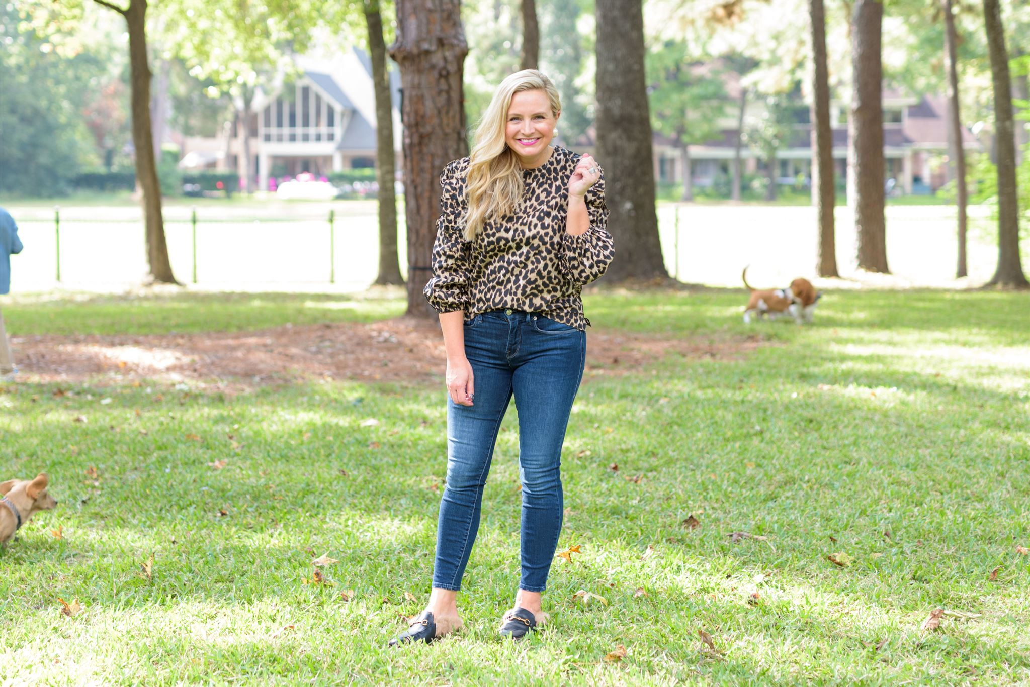 Cute Fall Outfits by popular Houston fashion blog, Fancy Ashley: image of a woman wearing a leopard top, jeans, and faux fur lined black mules.